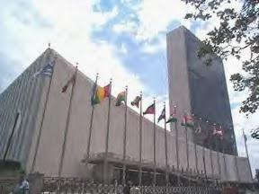 UN Cesspool