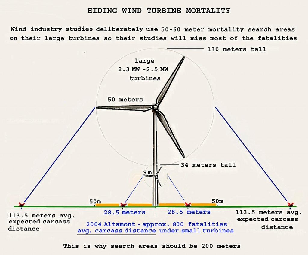 Bird mortality table